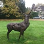 Lifesized Standing Red Deer Stag